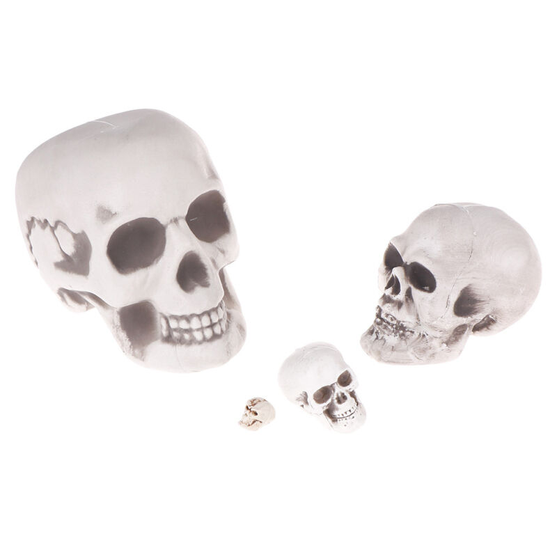 $0.99 • Buy Scary Man Plastic Skull Prop Skeleton Head Halloween Party Supplies Gifts