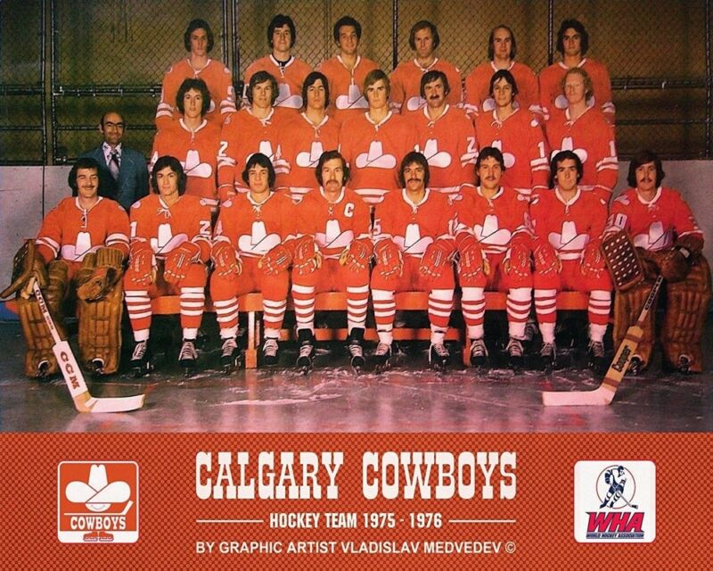 $9.29 • Buy WHA Defunct Calgary Cowboys 1975 - 76 Color Team Picture 8 X 10 Photo Pic