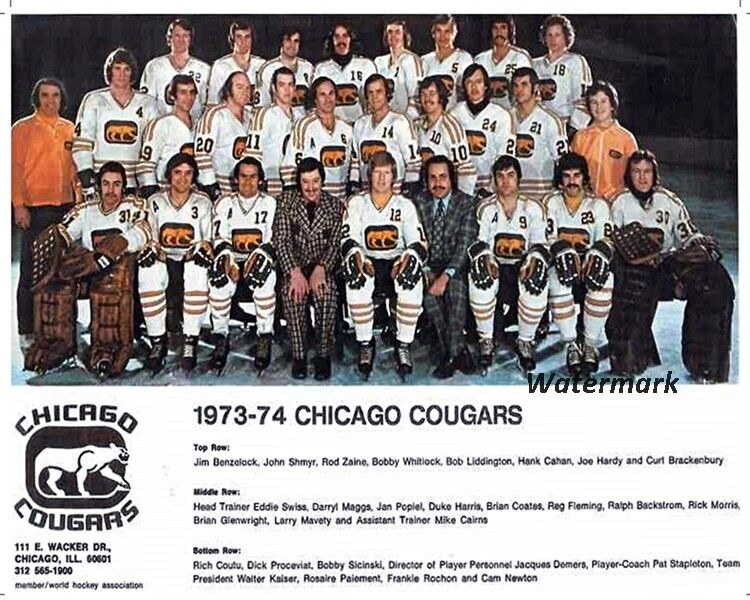 $5.99 • Buy 1972 - 73 WHA Chicago Cougars Color Team Photo 8 X 10 Photo Picture