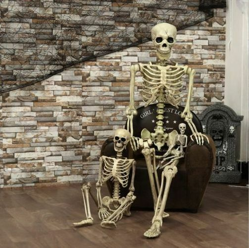 $9.98 • Buy Halloween Props Plastic Human Skeleton Full Size Body Anatomy Model Decoration