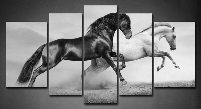 $43.69 • Buy Framed Horse Wall Art Home Decor Black White Horses Canvas Print Animal Pictures