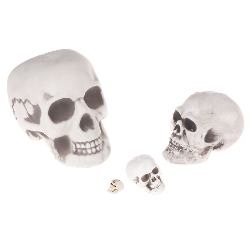 $7.05 • Buy Scary Man Plastic Skull Prop Skeleton Head Halloween Party Supplies Gifts DO