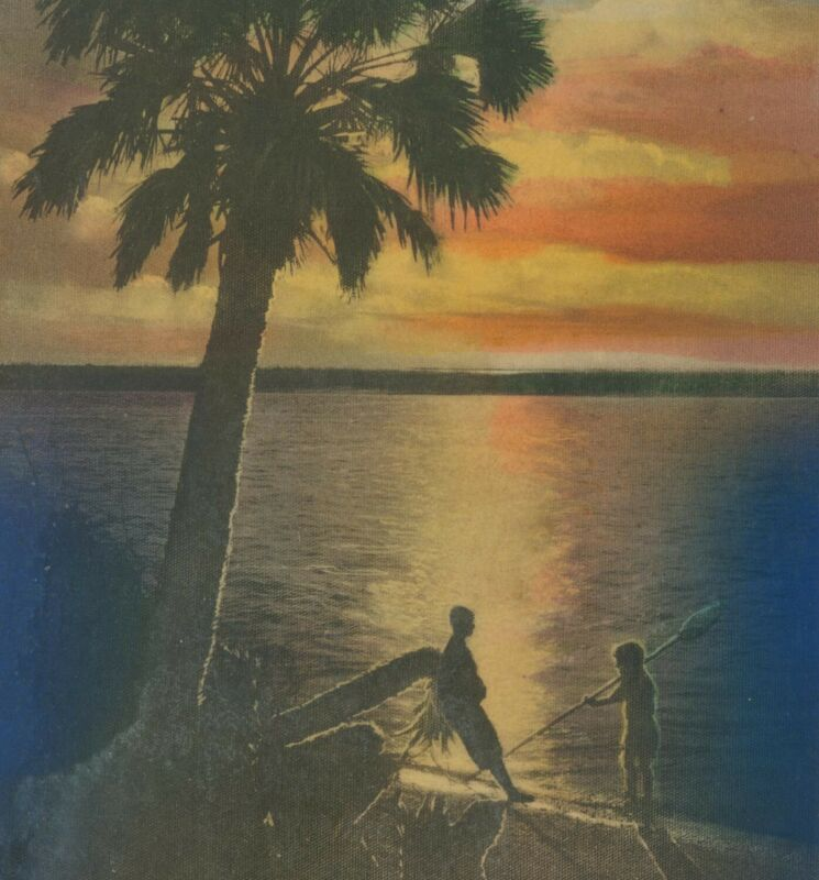 $42.50 • Buy E.G. Barnhill Hand Colored Picture Postcard The Story Teller FL Old Florida Art